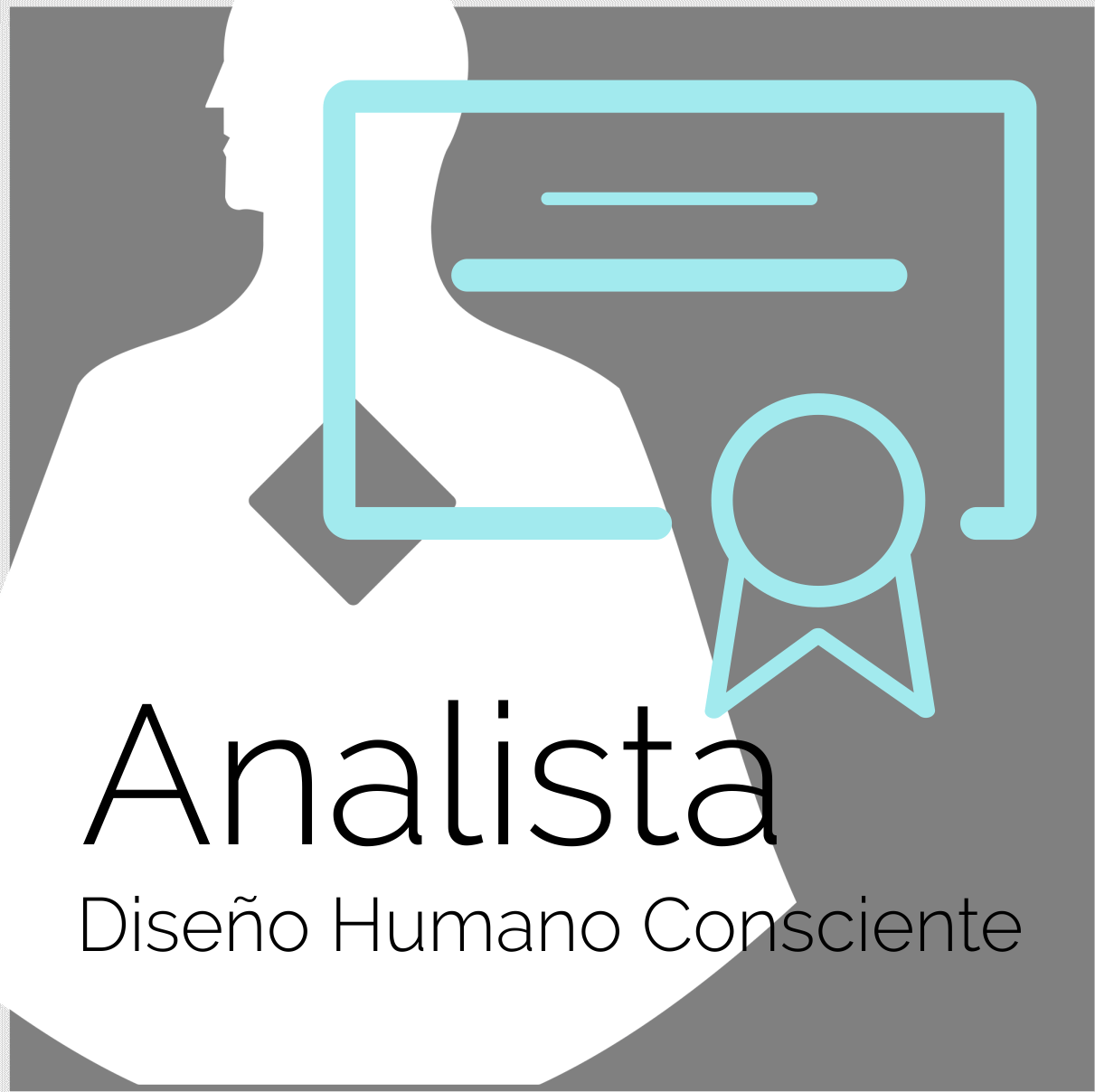 Formación Profesional Diseño Humano - Analista