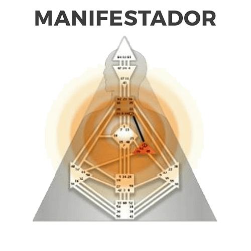 Los 4 tipos en Diseño Humano, el Manifestador